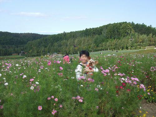 070923-suzuran-park5.jpg