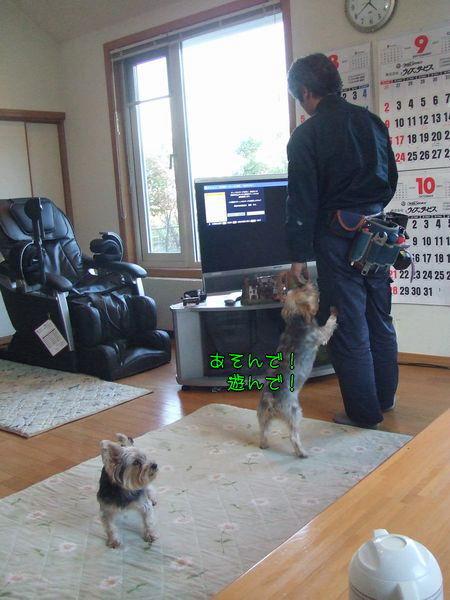 070930-niseko7.jpg