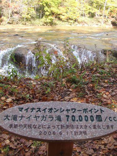 071018-kouyou12.jpg