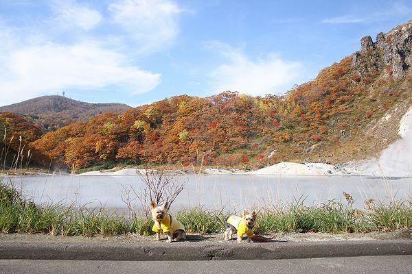 071025-noboribetu-jigokudani9.jpg
