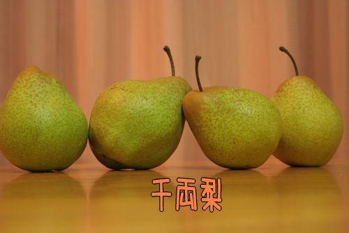 071106-mukawa14.jpg