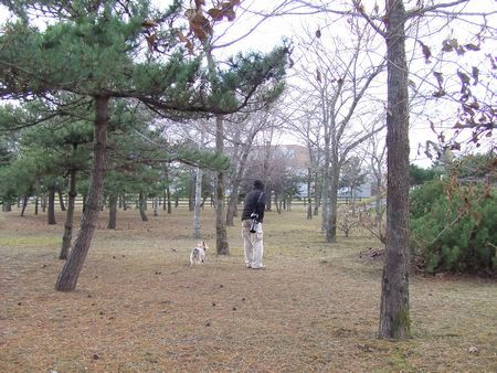 071127-park3.jpg