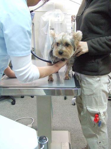 071211-clinic1.jpg