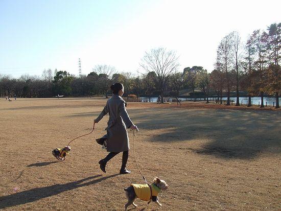 071224-park2.jpg