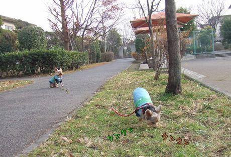071225-nohara1.jpg