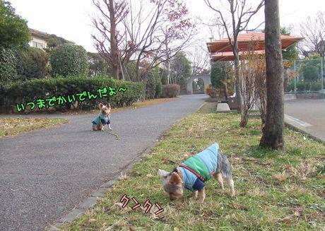 071225-nohara2.jpg