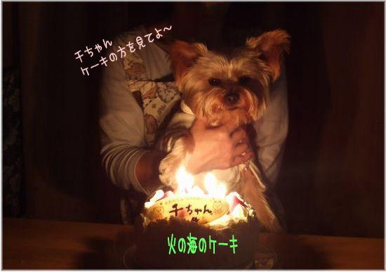 080115-birthday1.jpg