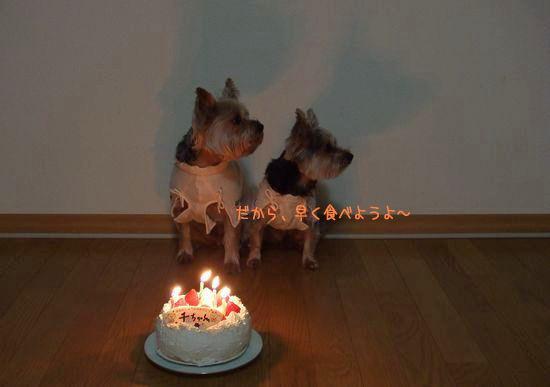 080115-birthday2.jpg