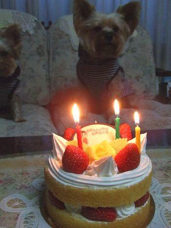 080121-birthday1.jpg