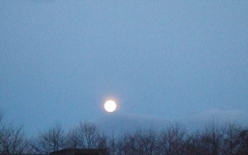 080122-moon.jpg