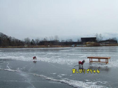 080123-skate1.jpg