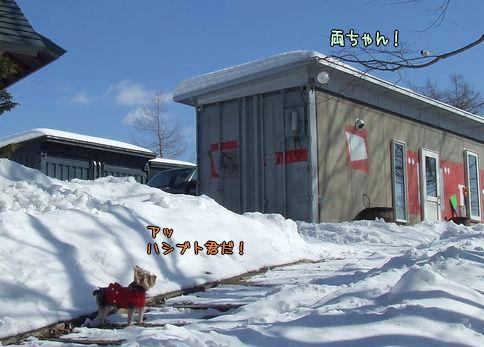 080219-onsen4.jpg