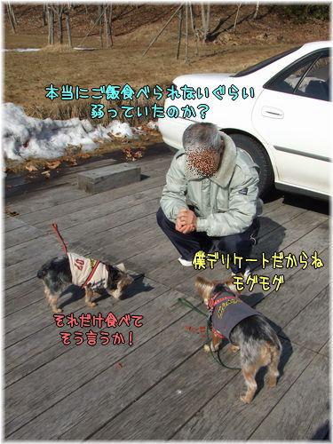 080312-sanpo8.jpg