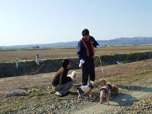 080409-miyajimanuma8.jpg