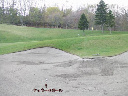 080509-golf4.jpg