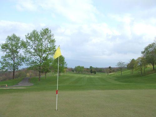 080509-golf7.jpg