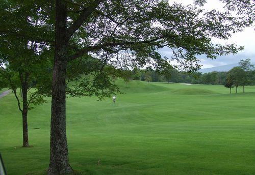 080901-golf1.jpg