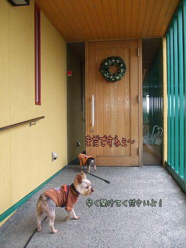 081027-kuresu1.jpg