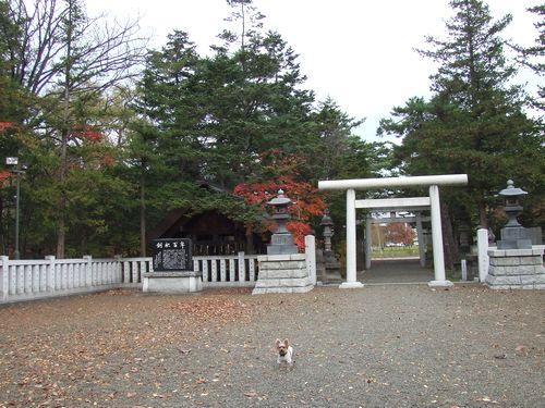 081031-iwamizawa2.jpg