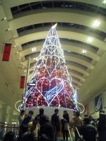 クリスマスツリークイーンズ