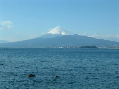 nisiizu2.jpg