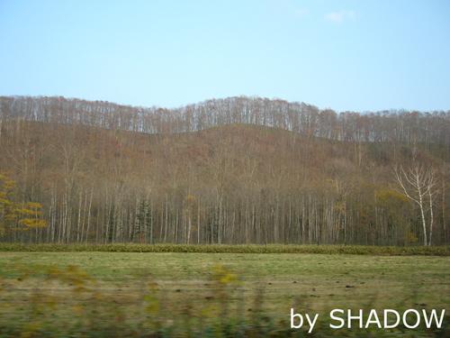 北海道風景1