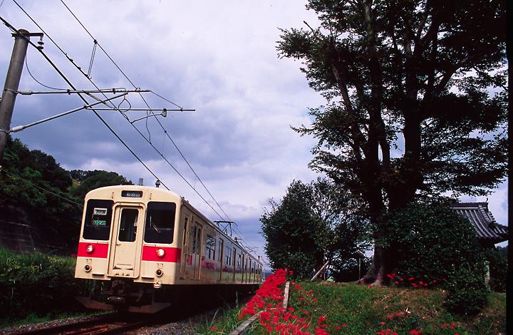 yoshioguchi1-1.jpg