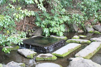神田上水水源