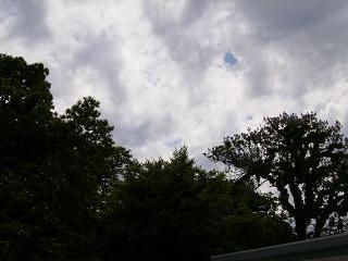 P5140004a.jpg