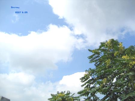 sky2007629b.jpg