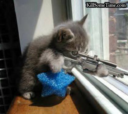 Kitty-Sniper.jpg