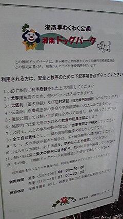 P1000028_20091004201715.jpg