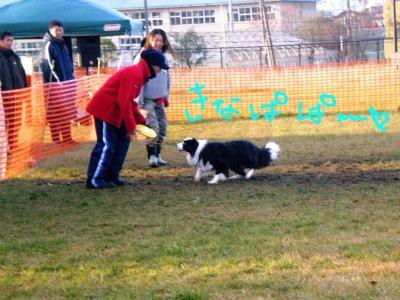 2008年11月09日_シュート君 (2)