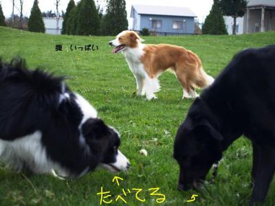 2008_10260036.jpg