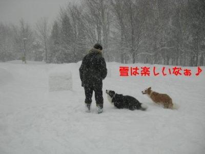 雪男3人衆