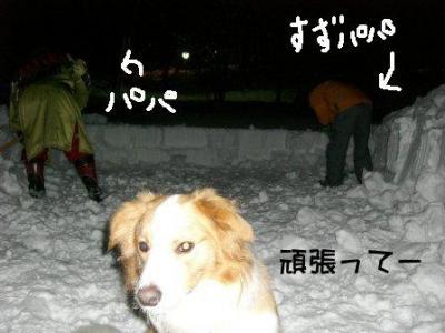 雪かきがんばってー