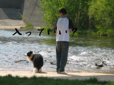 川、大好き