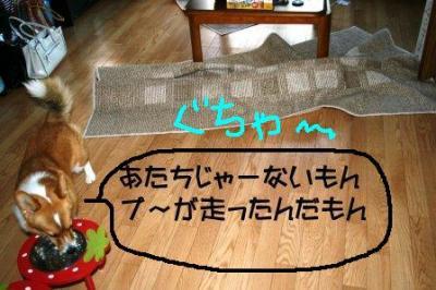 IMG_1131_sh01.jpg