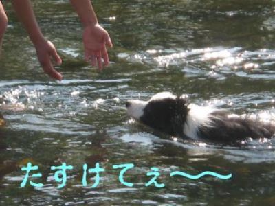 溺れるシュート
