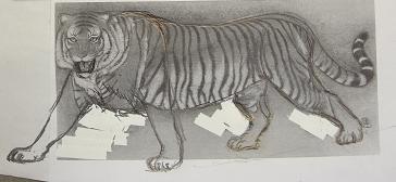 虎デザイン画