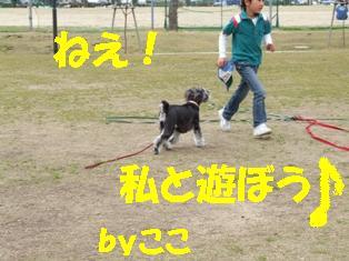 DSCF1213.jpg