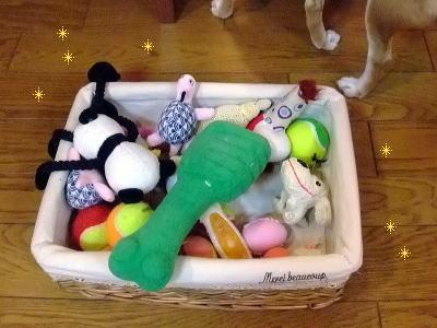 洗えるおもちゃも洗わない…。