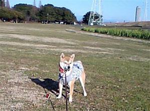 20080118-1.jpg