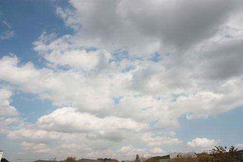 200910131.jpg