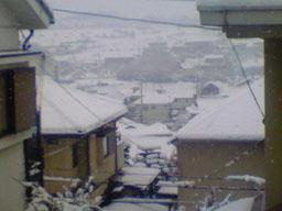 リアルも雪国