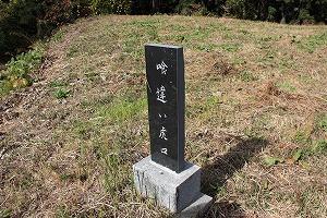 名胡桃城02