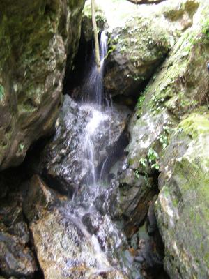 ゴーロの滝 1