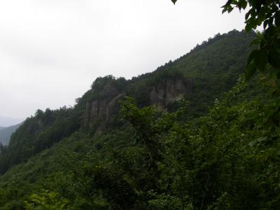 登山道から 1