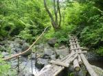 シナノキ沢と丸太橋