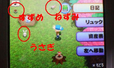 taiyo102.jpg